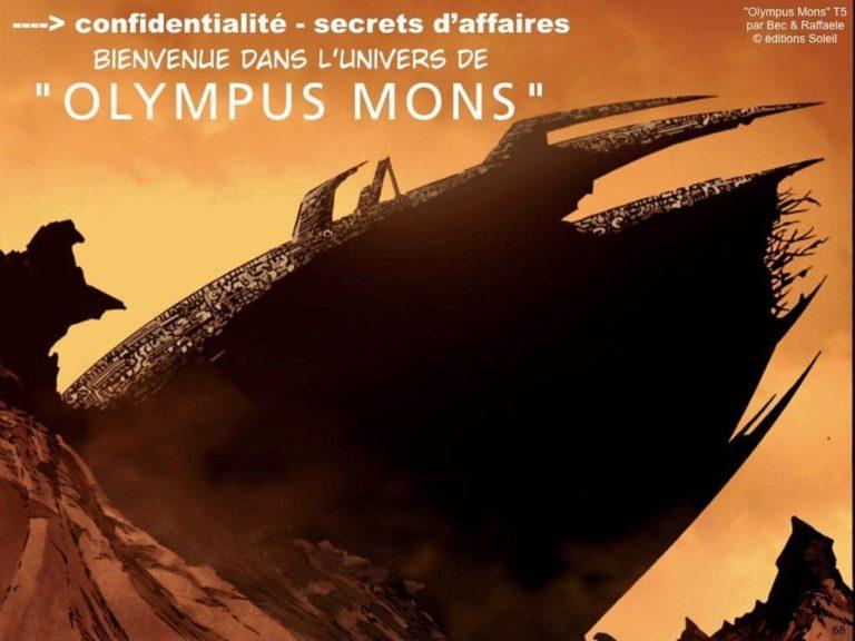 241-07-2019-CYBER-securite-des-systemes-dinformation-OIV-LPM-2005-operateur-dimportance-vitale-Constellation©Ledieu-Avocats.068-1024x768