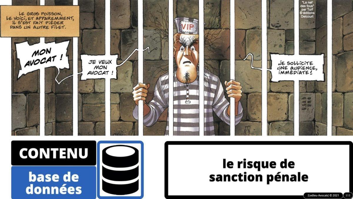 334 extraction indexation BASE DE DONNEES © Ledieu-avocat 24-05-2021.111